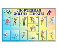 Стенд «Спортивная жизнь школы», 13 карманов формата А4, 95х150 см